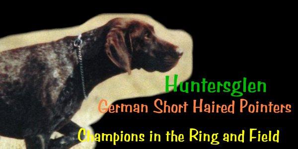 Huntersglen GSP's