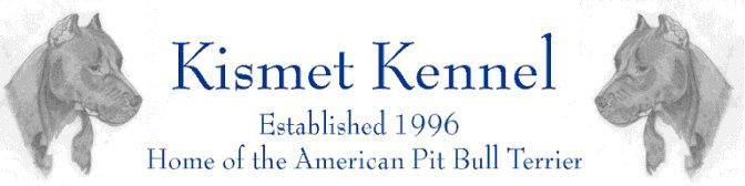 Kismet Kennel American Pit Bull Terriers
