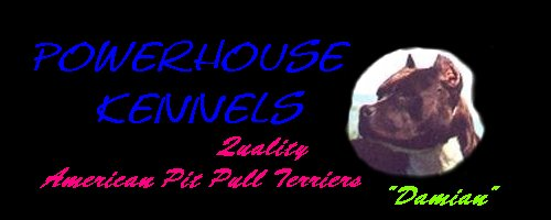 Powerhouse Kennels American Pit Bull Terriers