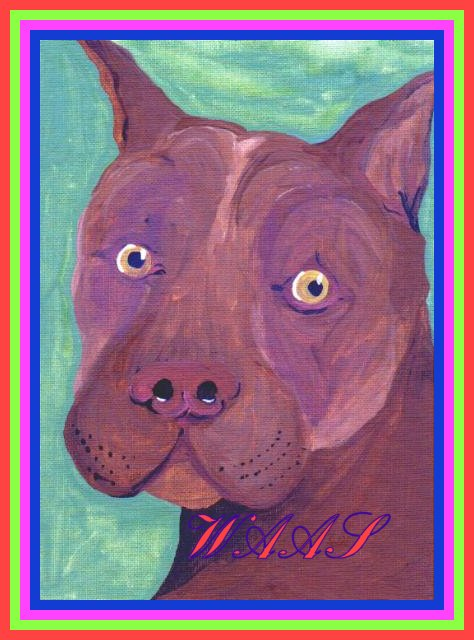 Red Nosed American Pit Bull Terrier acrylic for sale $55