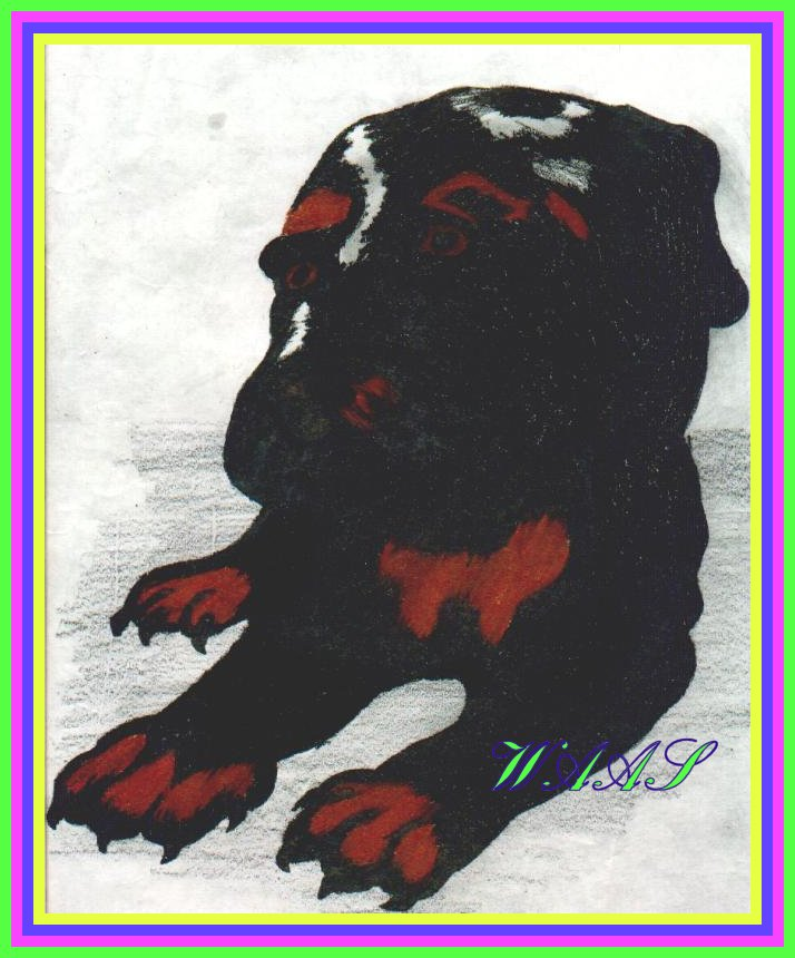 Rottweiler puppy colored pencil for sale $15