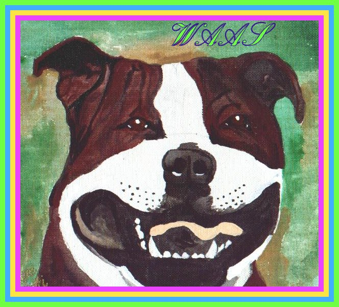 Rolona's Cocoa Chanel Staffordshire Bull Terrier acrylic  for sale $55